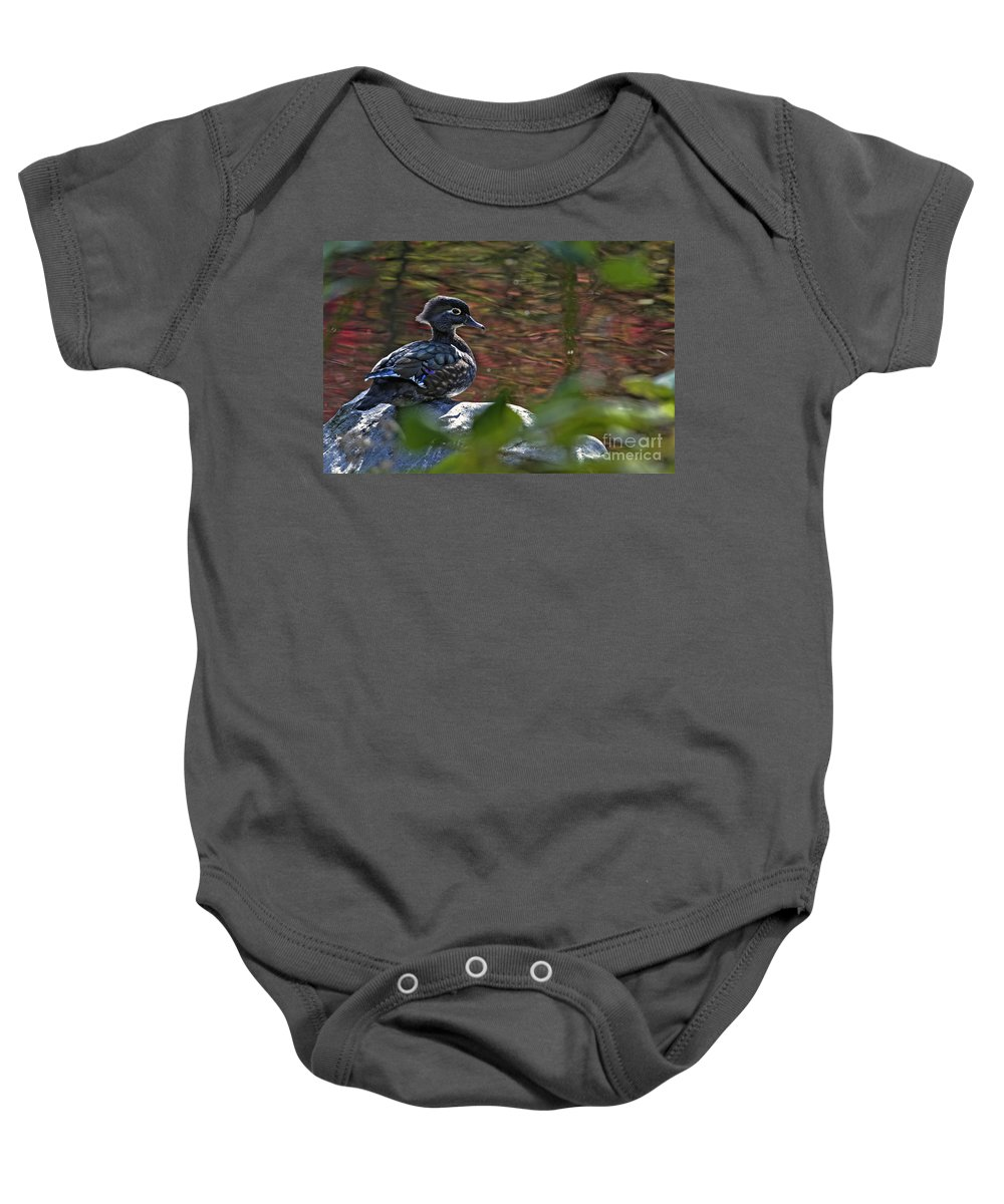 Wood Duck Baby Onesie featuring the photograph Missy Wood Duck by Sharon Talson
