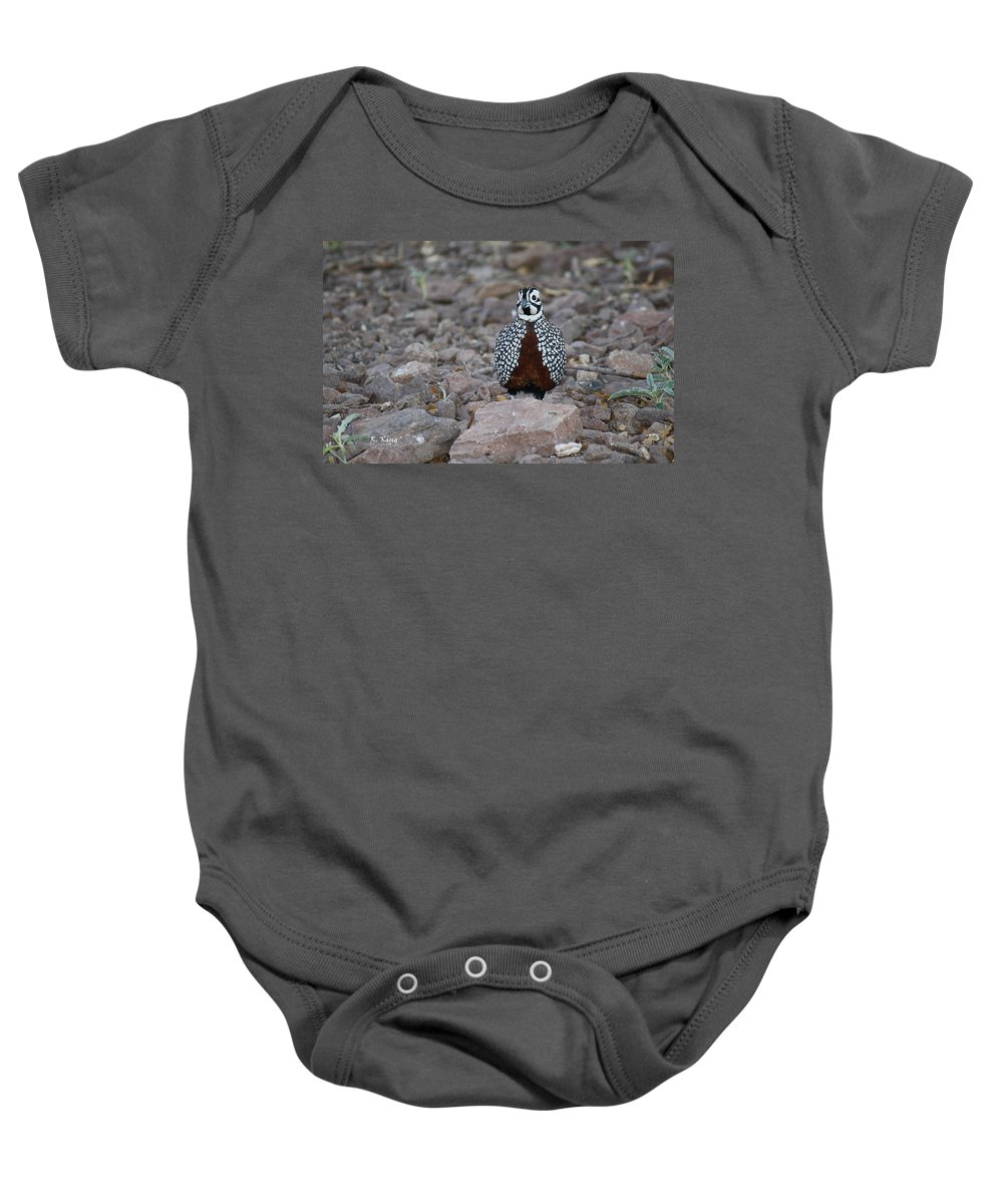 Roena King Baby Onesie featuring the photograph Montezuma Quail Male by Roena King