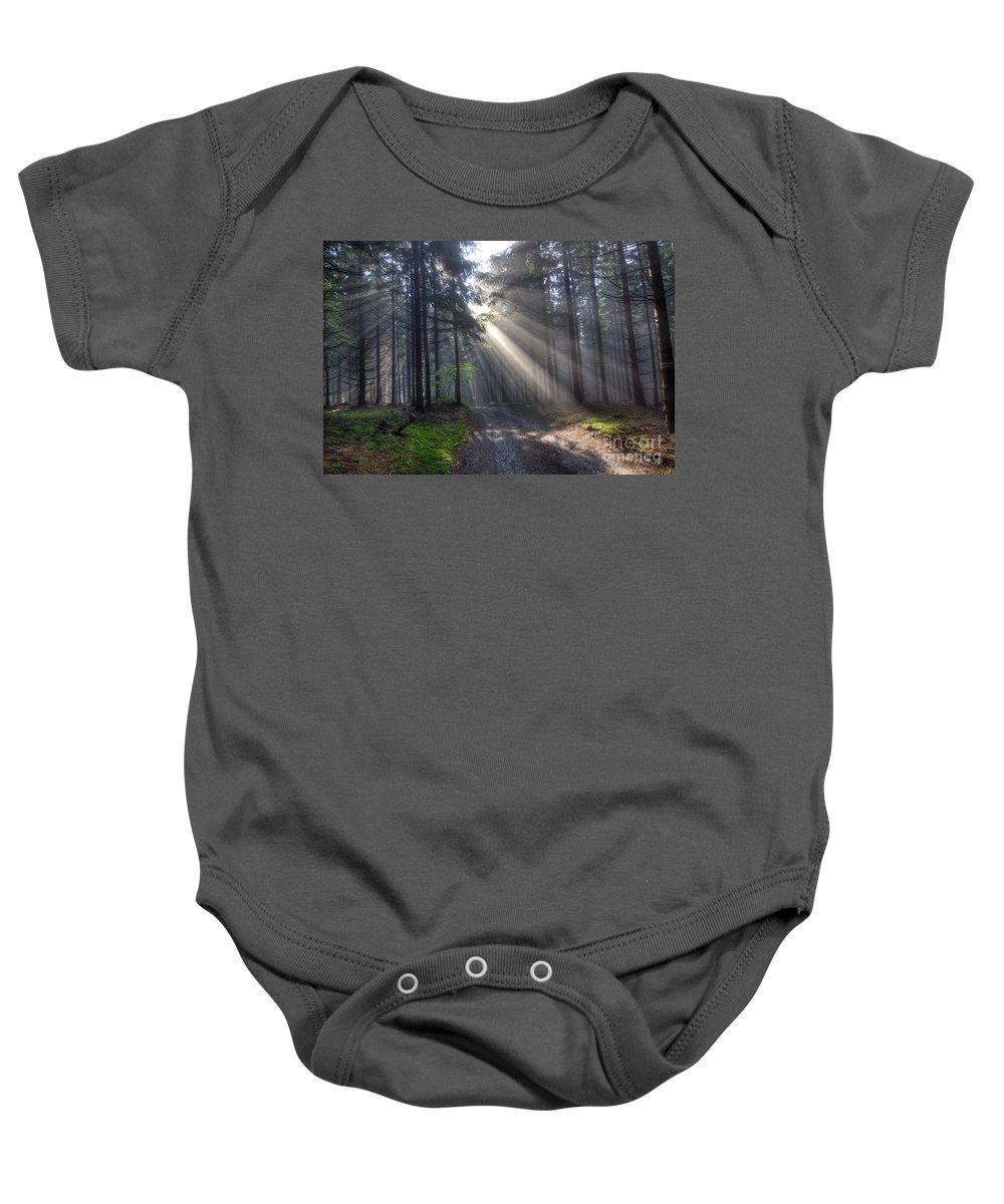 Rays Baby Onesie featuring the photograph Morning Forest In Fog by Michal Boubin