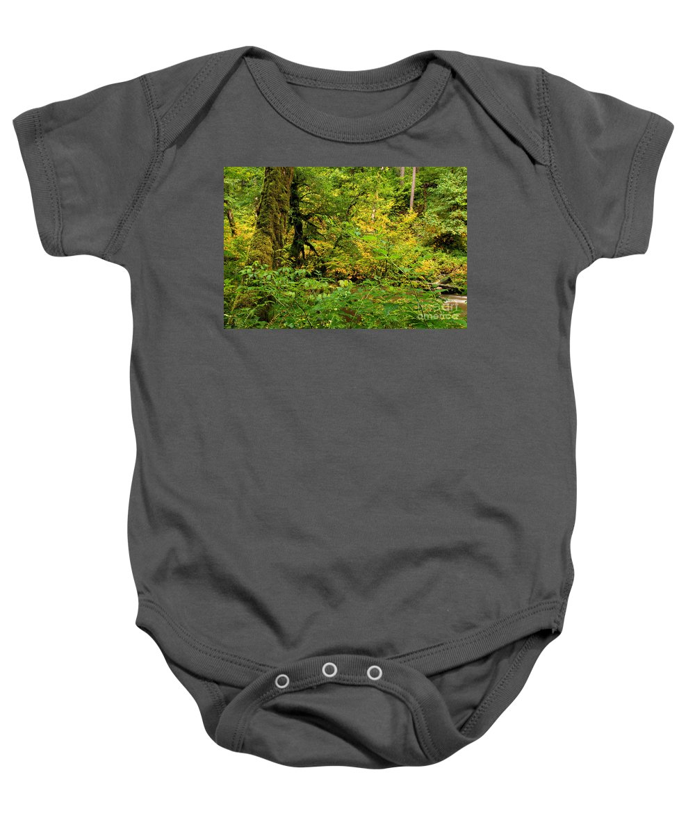 Silver Falls State Park Baby Onesie featuring the photograph Mossy Rainforest by Adam Jewell