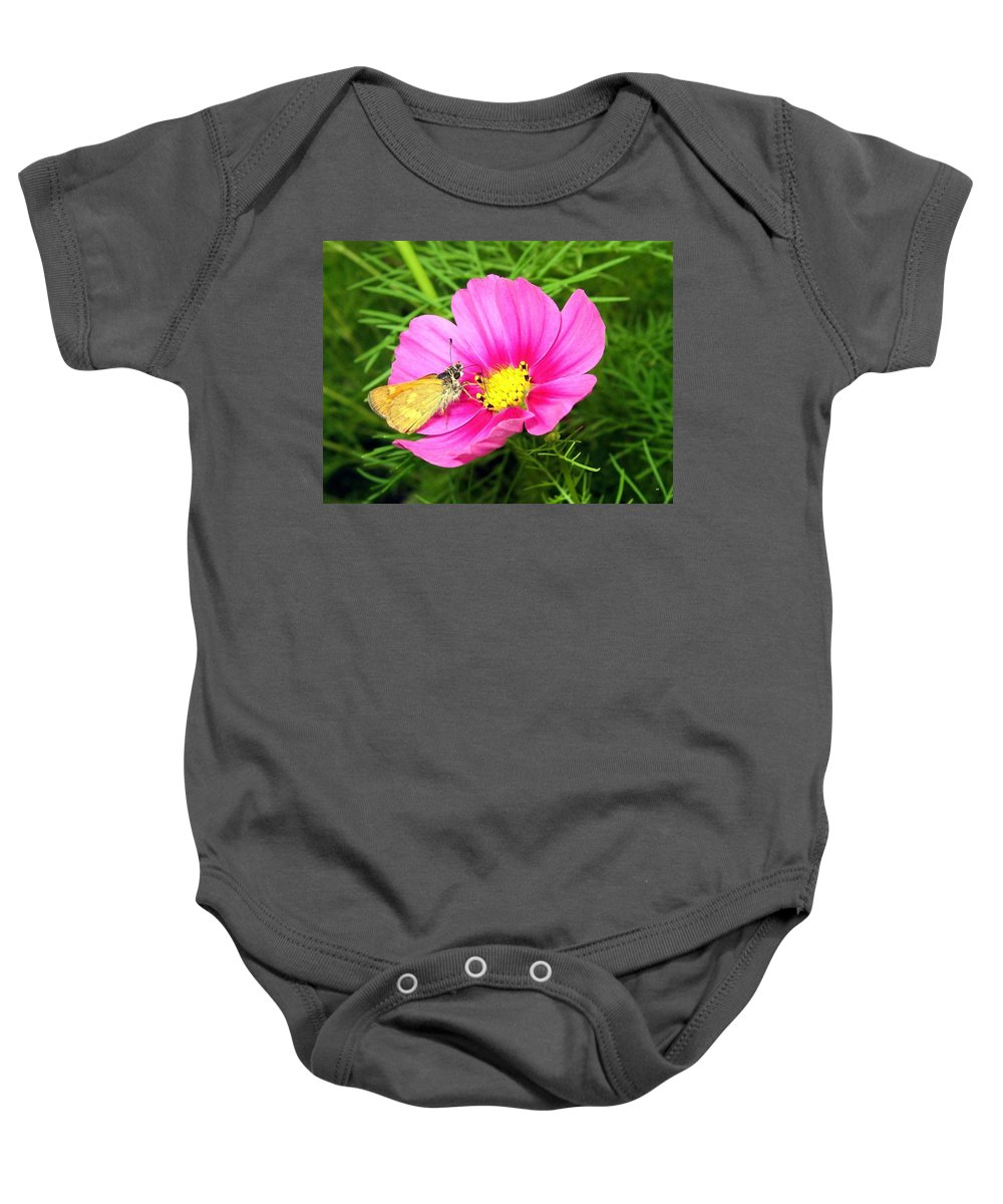 Moth Baby Onesie featuring the photograph Moth On A Cosmos by Will Borden