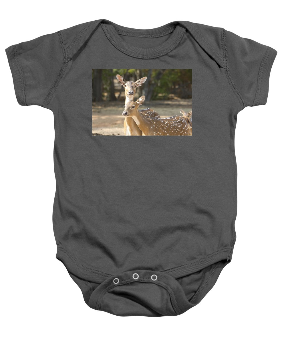 Deer Baby Onesie featuring the photograph Mother And Child V3 by Douglas Barnard