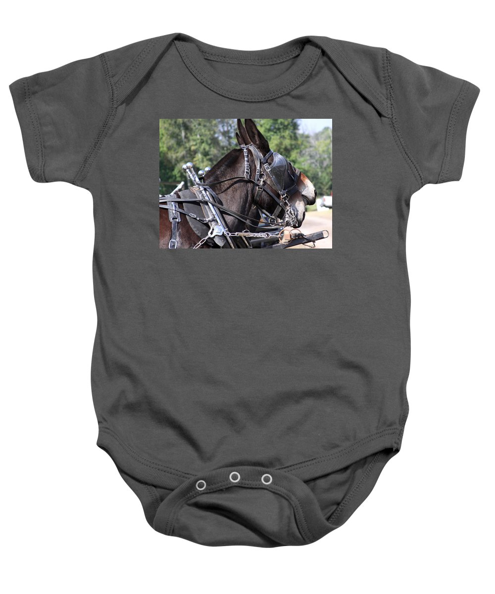 Mule Baby Onesie featuring the photograph Mule Days - Benson - A Pair Of Aces - Mules by Travis Truelove