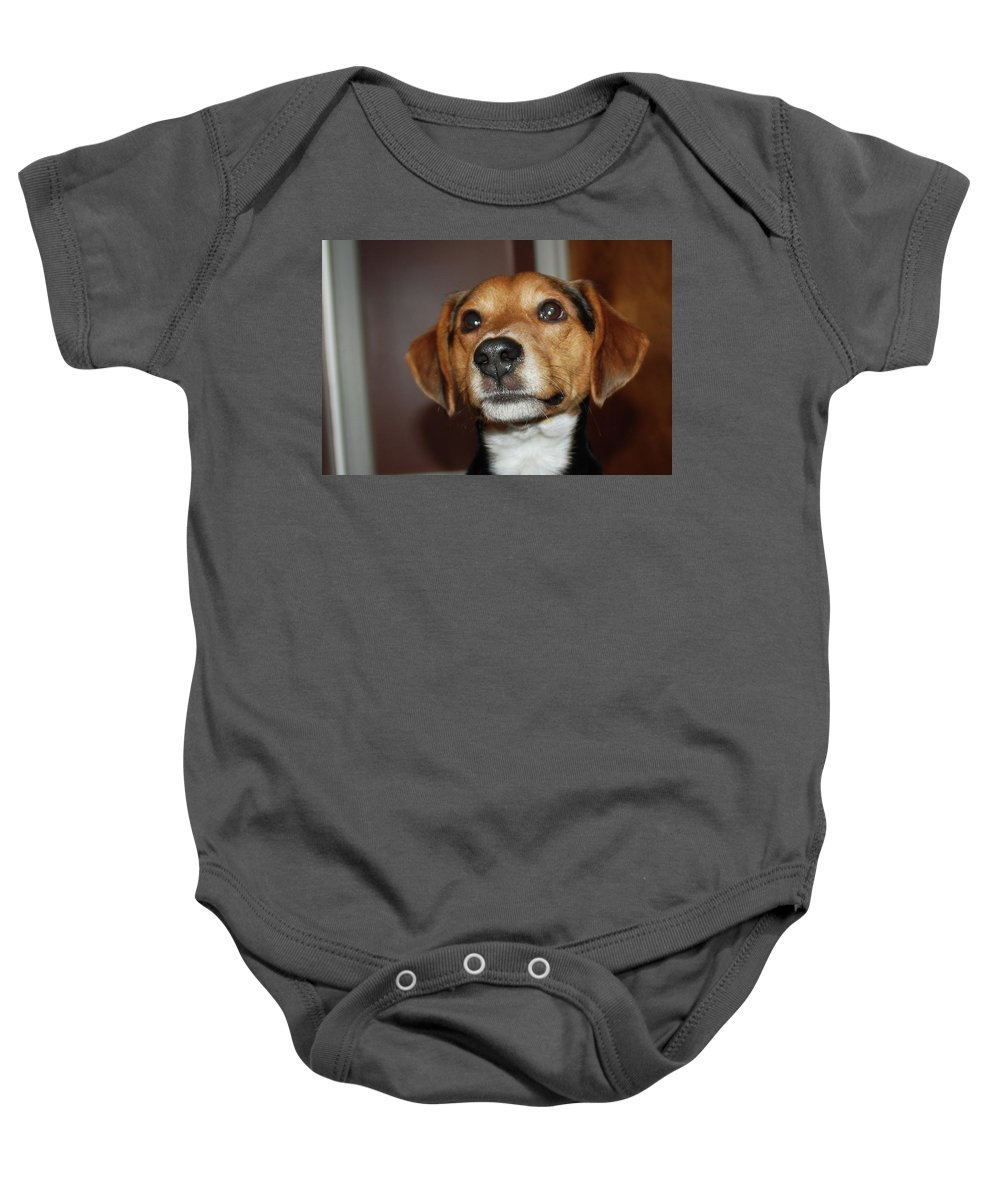 Dog Baby Onesie featuring the photograph Murphy 8596 by Guy Whiteley