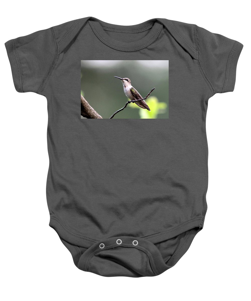 Hummingbird Baby Onesie featuring the photograph My Colors Are Coming by Travis Truelove