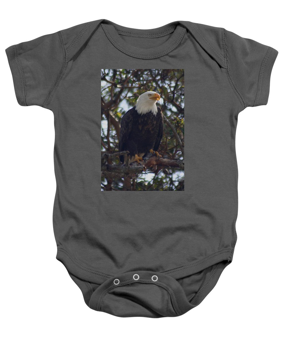 Bald Eagle Baby Onesie featuring the photograph My Madrona by Kym Backland