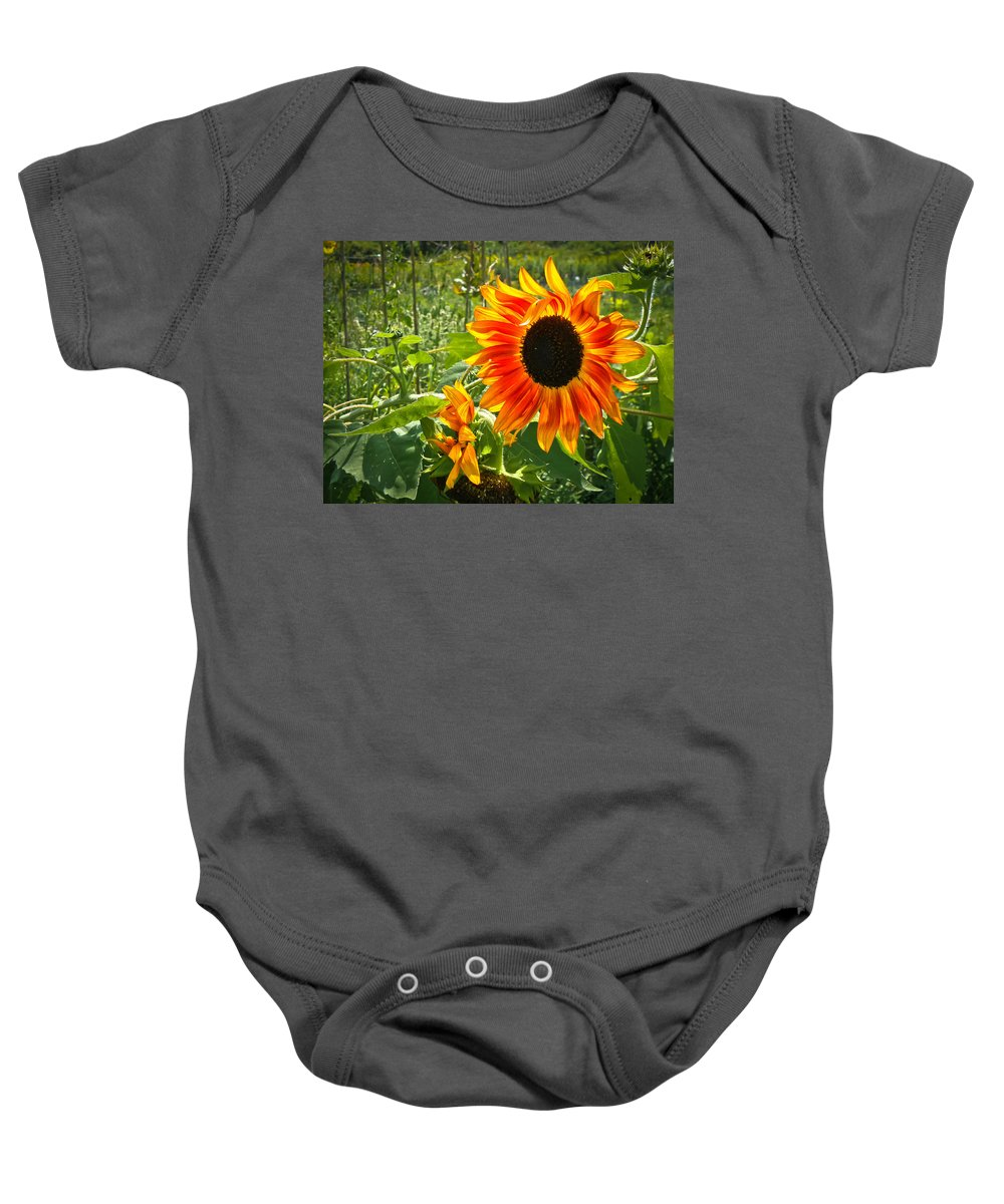 Flower Baby Onesie featuring the photograph Noontime Sunflowers by Jiayin Ma