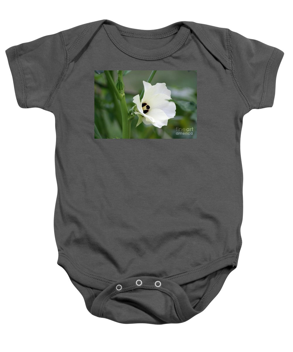 Flower Baby Onesie featuring the photograph Okra Flower by Living Color Photography Lorraine Lynch