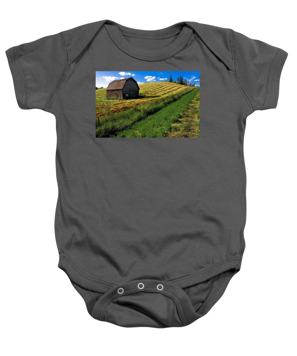 Agriculture Baby Onesie featuring the photograph Old Barn In A Field by Steve Nagy