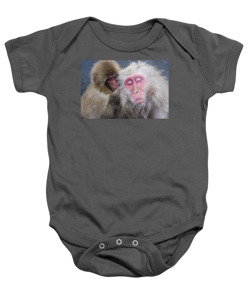 Winter Baby Onesie featuring the photograph Older Snow Monkey Being Groomed By A by Natural Selection Anita Weiner