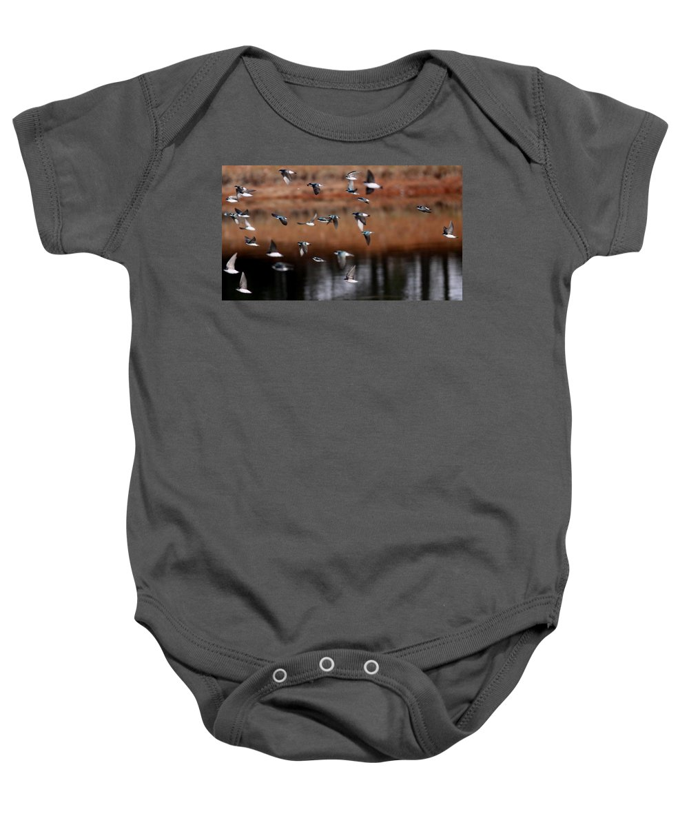 Tree Swallows Baby Onesie featuring the photograph One Last Swallow by Travis Truelove