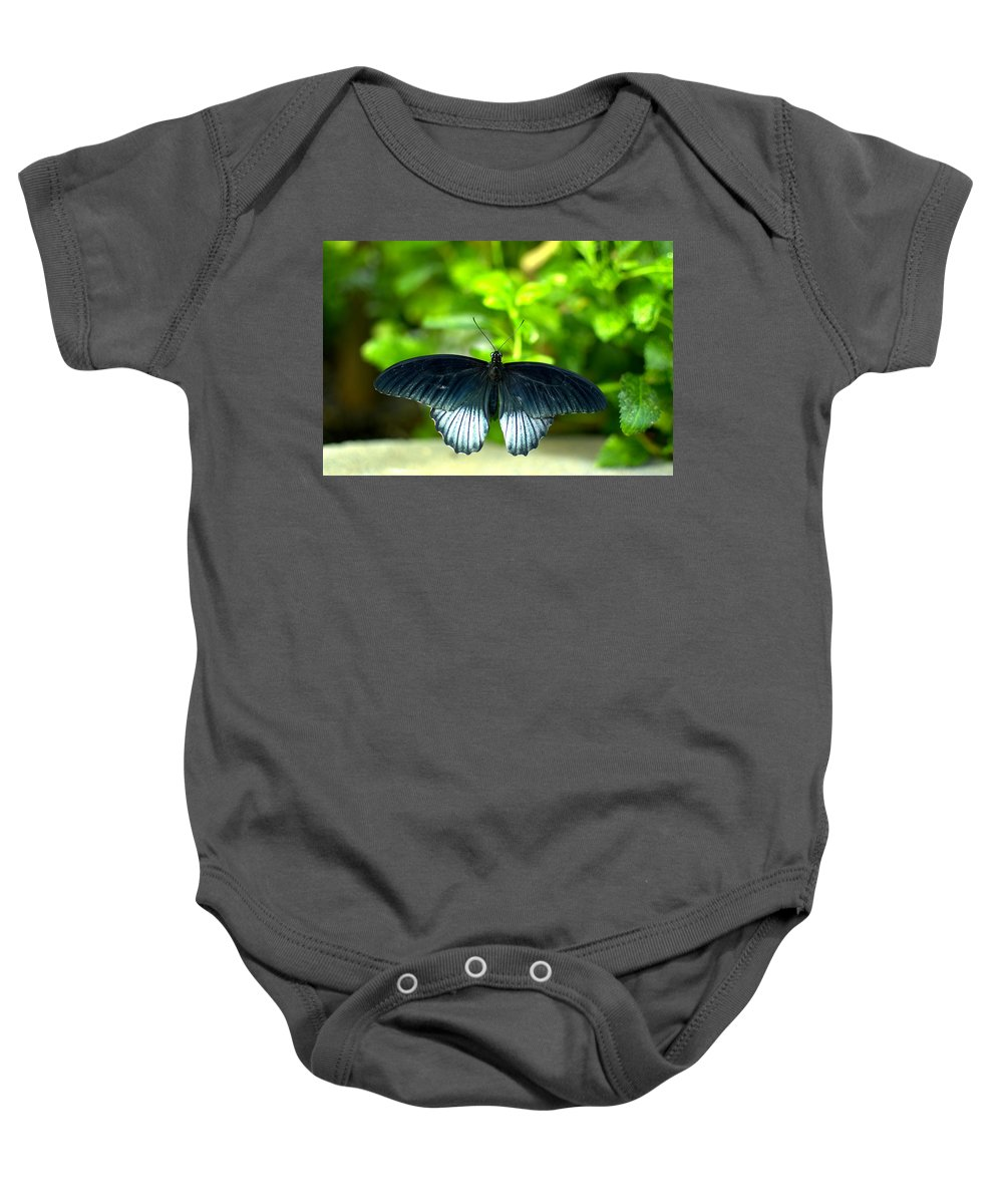 Papilio Lowii Baby Onesie featuring the photograph Papilio Lowii II by Floyd Menezes