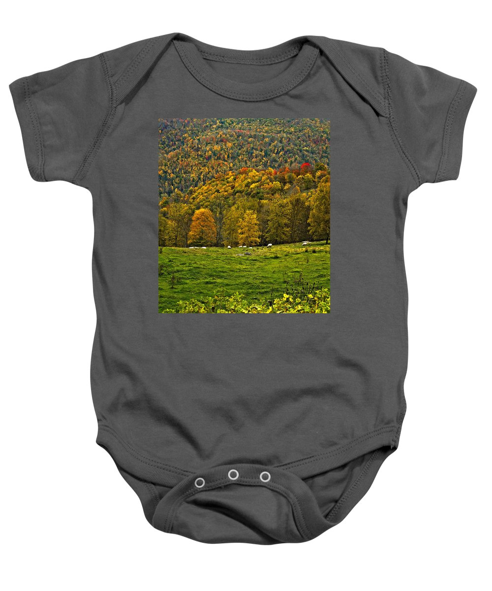 West Virginia Baby Onesie featuring the photograph Pastoral Painted by Steve Harrington