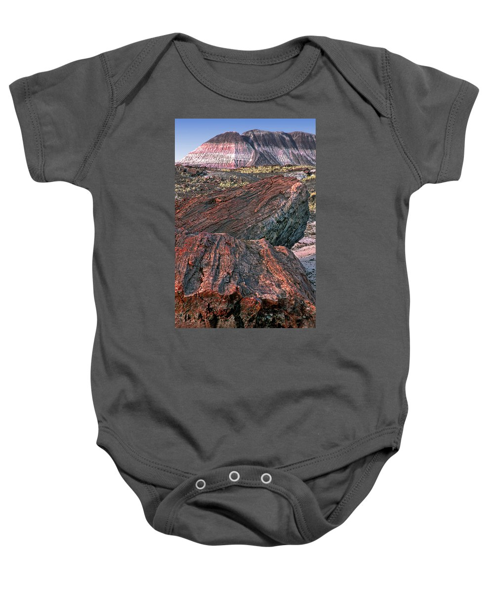 Petrified Forest National Park Baby Onesie featuring the photograph Petrified Forest National Park by Dave Mills