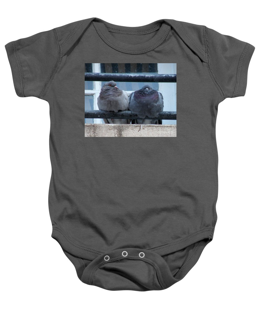 Pigeons Baby Onesie featuring the photograph Pigeons Perching by Lainie Wrightson