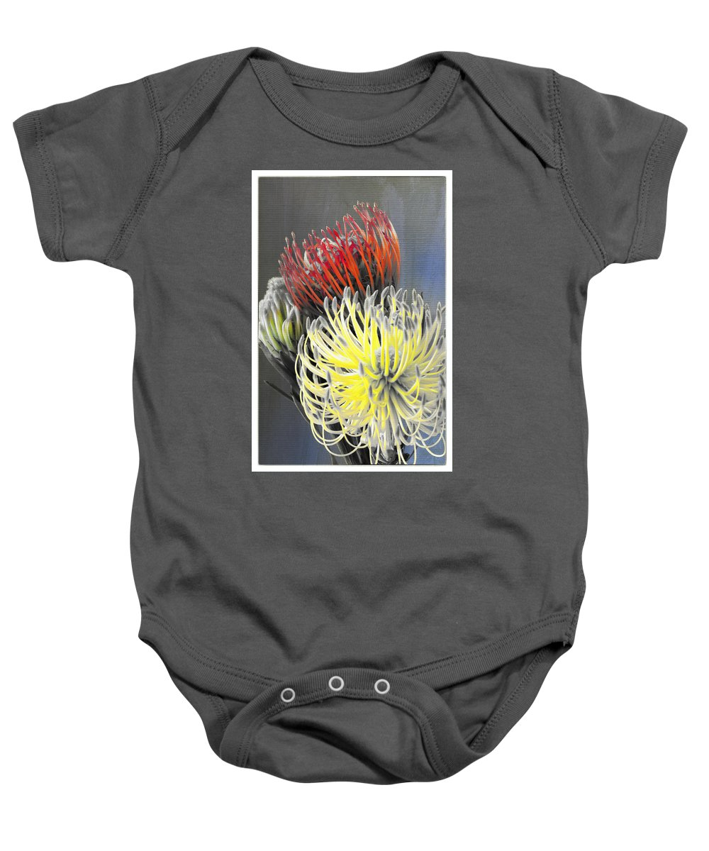 Florals Baby Onesie featuring the photograph Pincushion by Linda Dunn