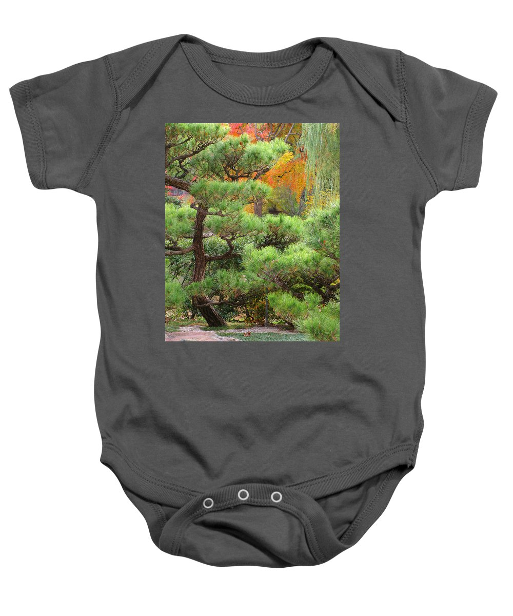 Pine Baby Onesie featuring the photograph Pine And Autumn Colors In A Japanese Garden II by Greg Matchick