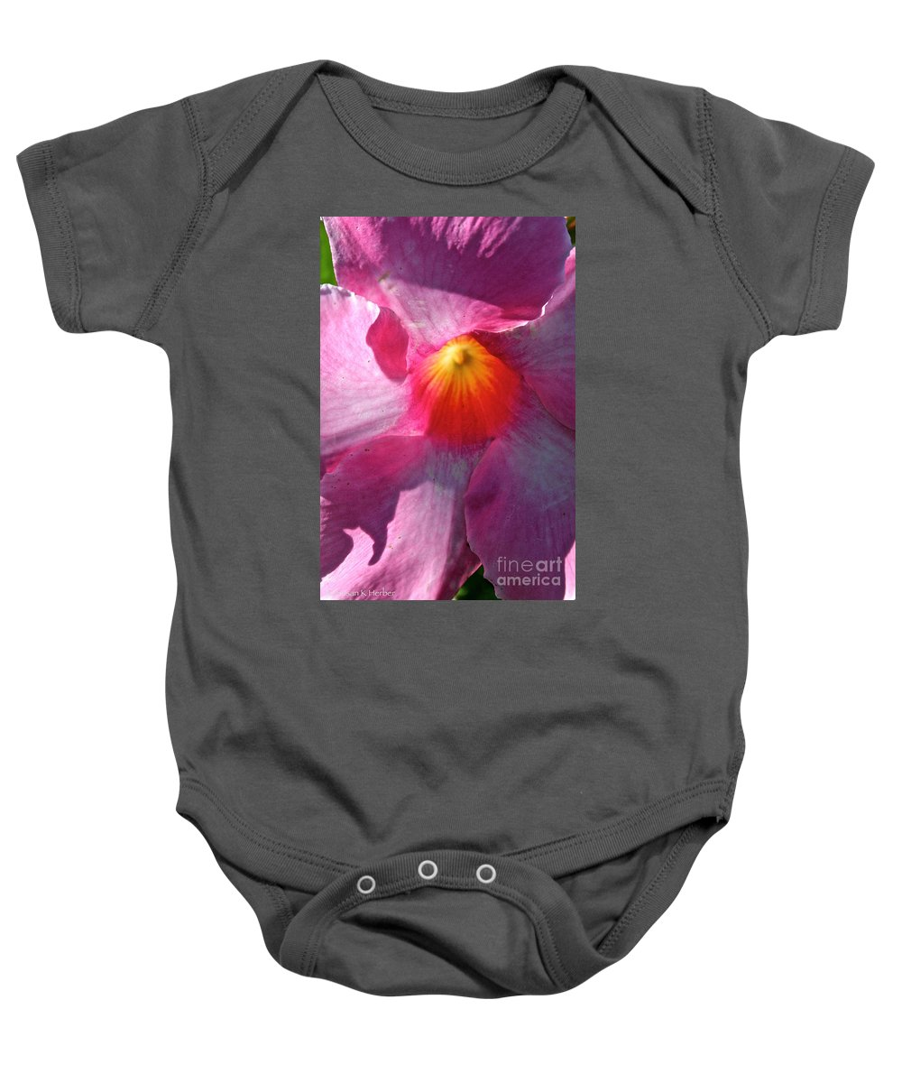 Plant Baby Onesie featuring the photograph Pink Mandevilla by Susan Herber