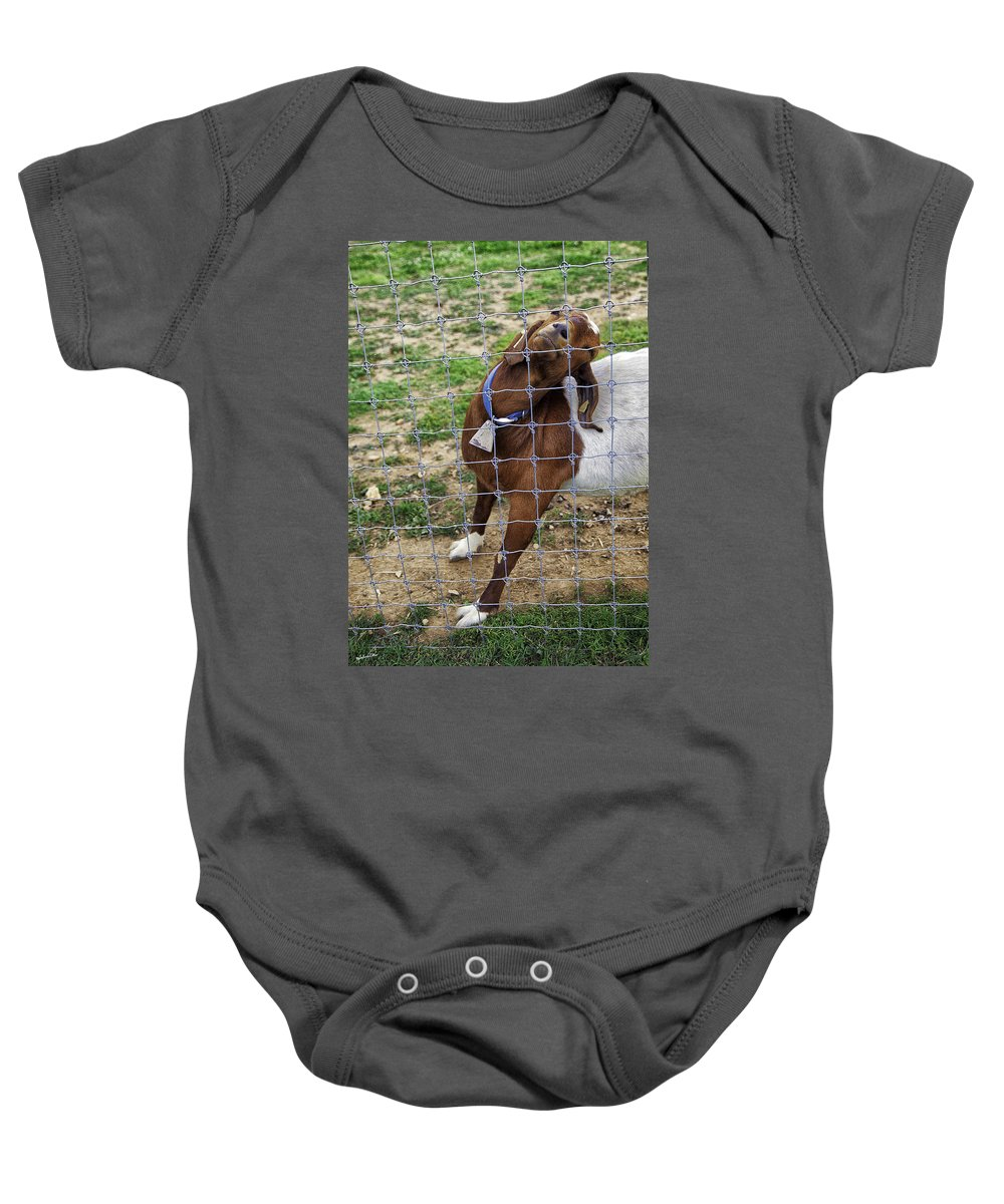 Billy Goat Baby Onesie featuring the photograph Please Exonerate Me 2 - Billy Goat by Madeline Ellis