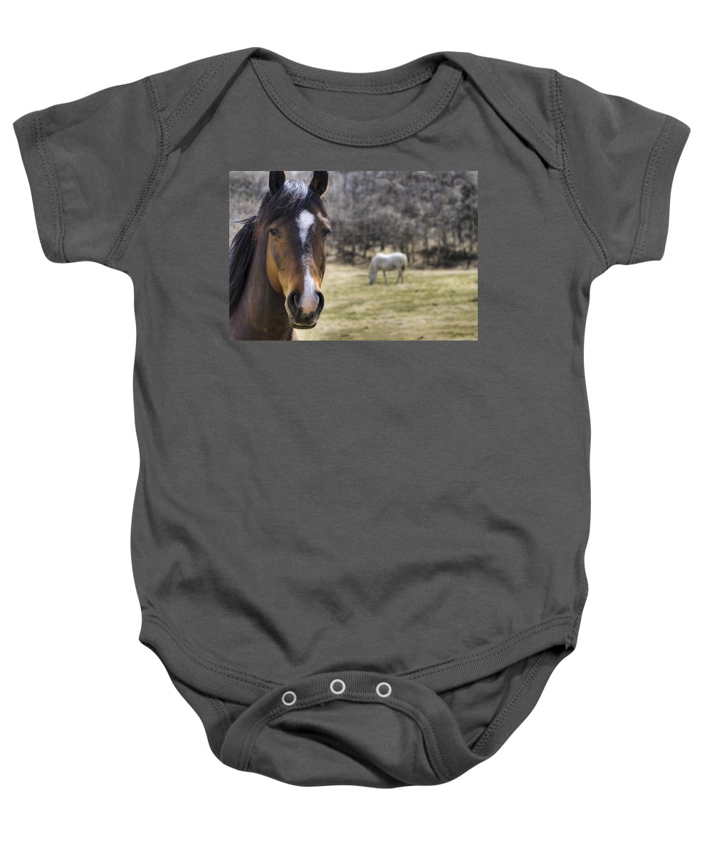 Alberta Baby Onesie featuring the photograph Portrait Of A Horse by Philippe Widling