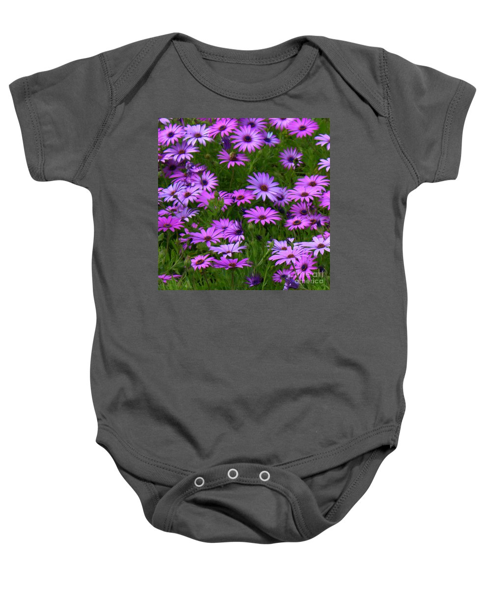 Purple Daisies Baby Onesie featuring the photograph Purple Daisies Square by Carol Groenen