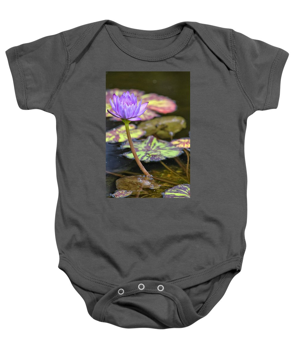 Flower Baby Onesie featuring the photograph Purple Water Lilly by Lauri Novak