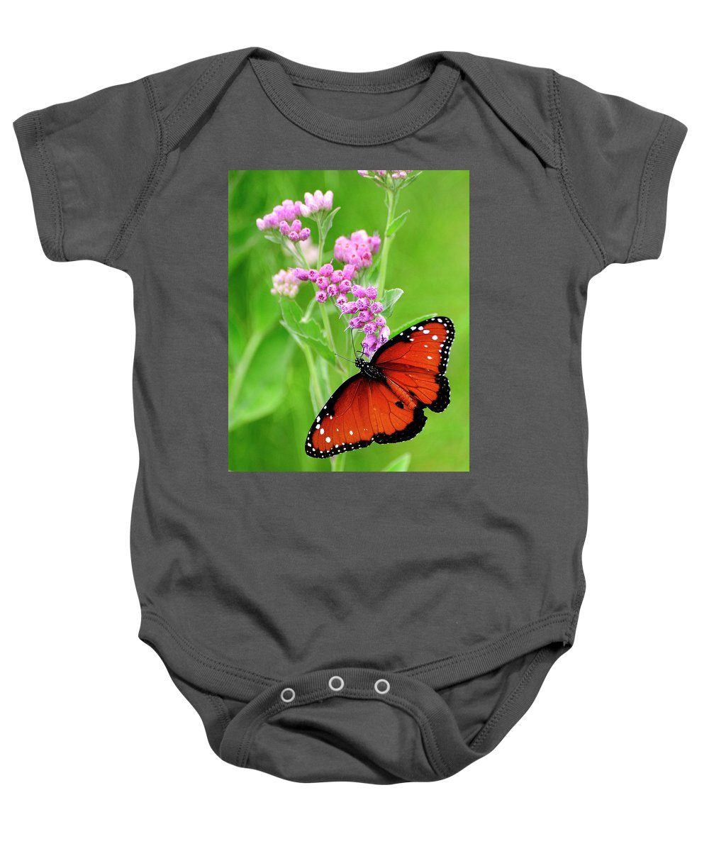 Queen Butterfly Baby Onesie featuring the photograph Queen Butterfly And Pink Flowers by Bill Dodsworth