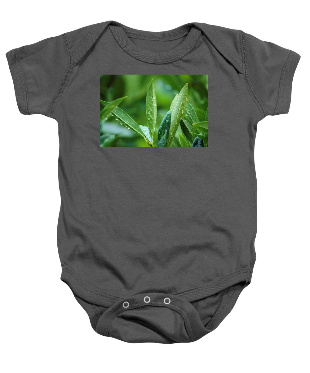Rain Baby Onesie featuring the photograph Raindrops by Michael Merry