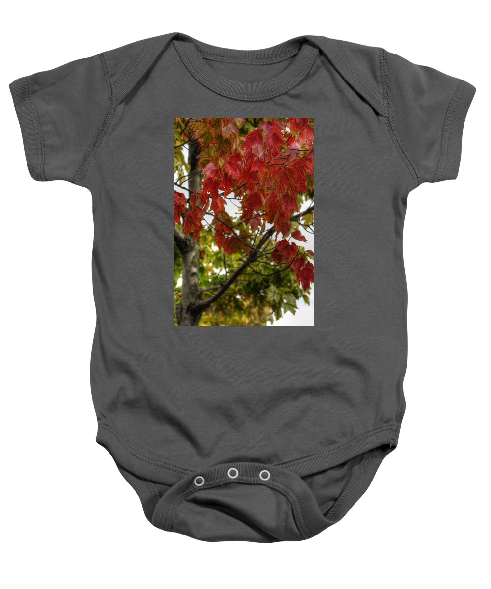 Baby Onesie featuring the photograph Red And Green Prior X-mas by Michael Frank Jr