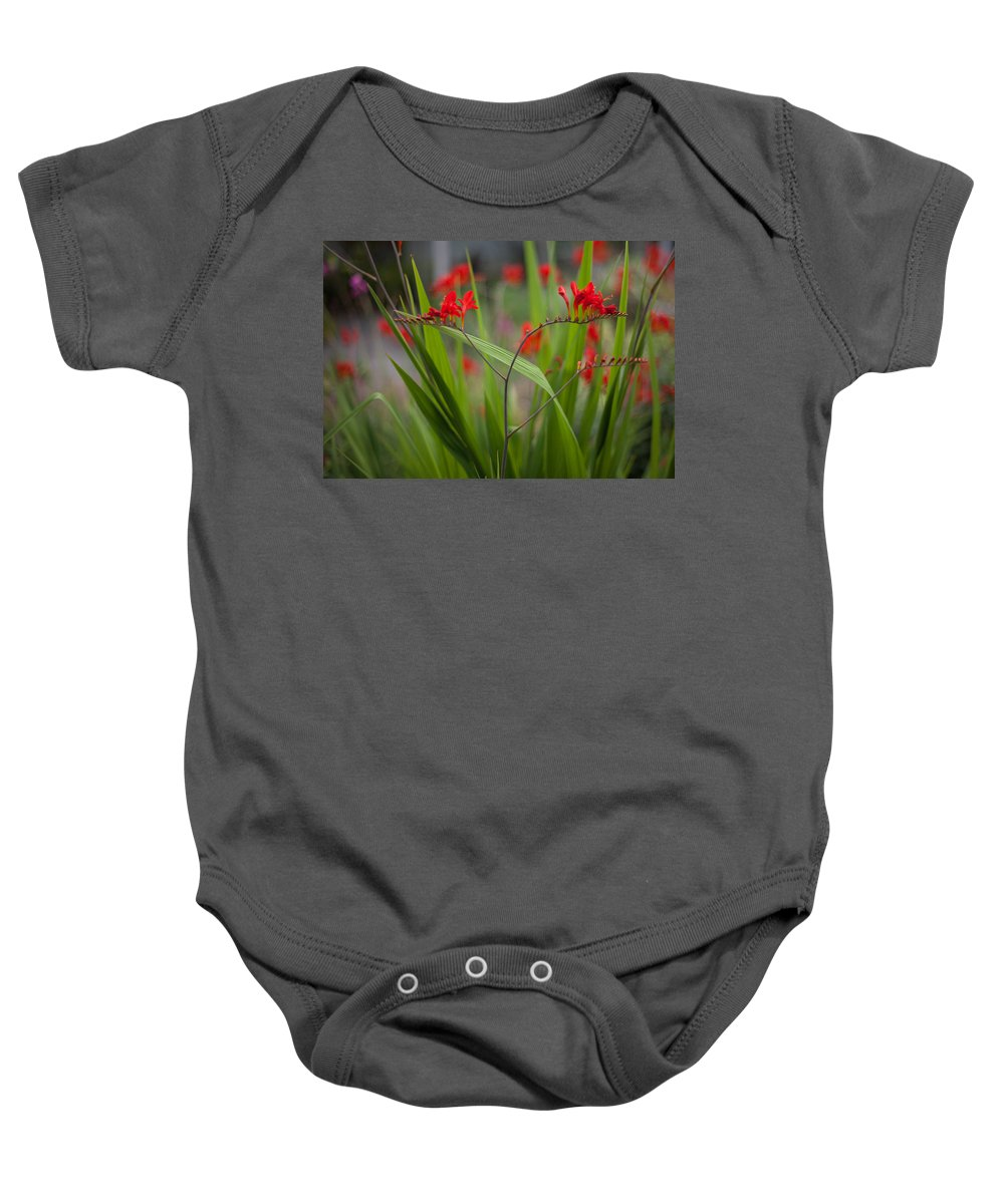 Flower Baby Onesie featuring the photograph Red Blade Symmetry by Mike Reid
