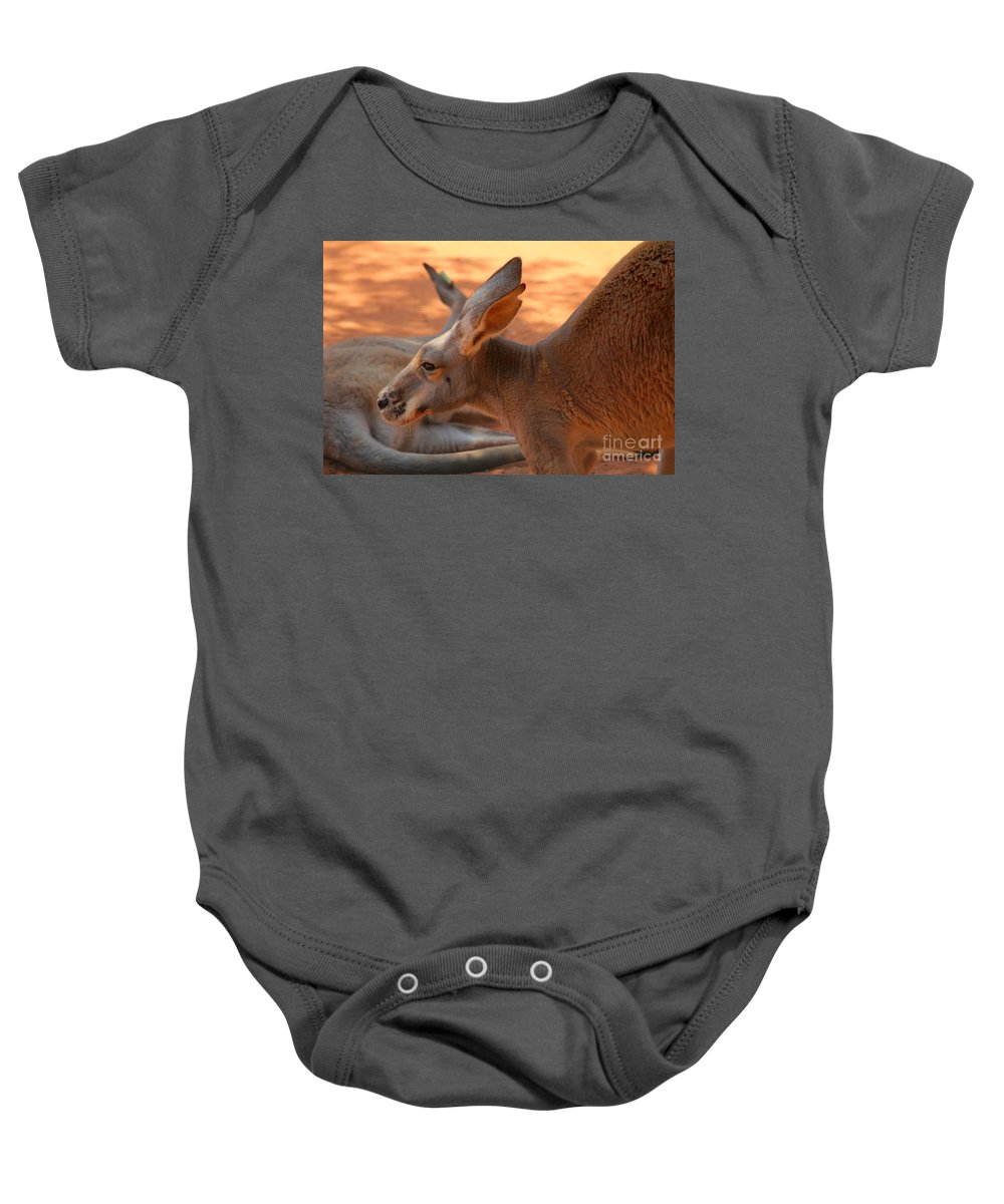 Red Baby Onesie featuring the photograph Red Roos by Alycia Christine
