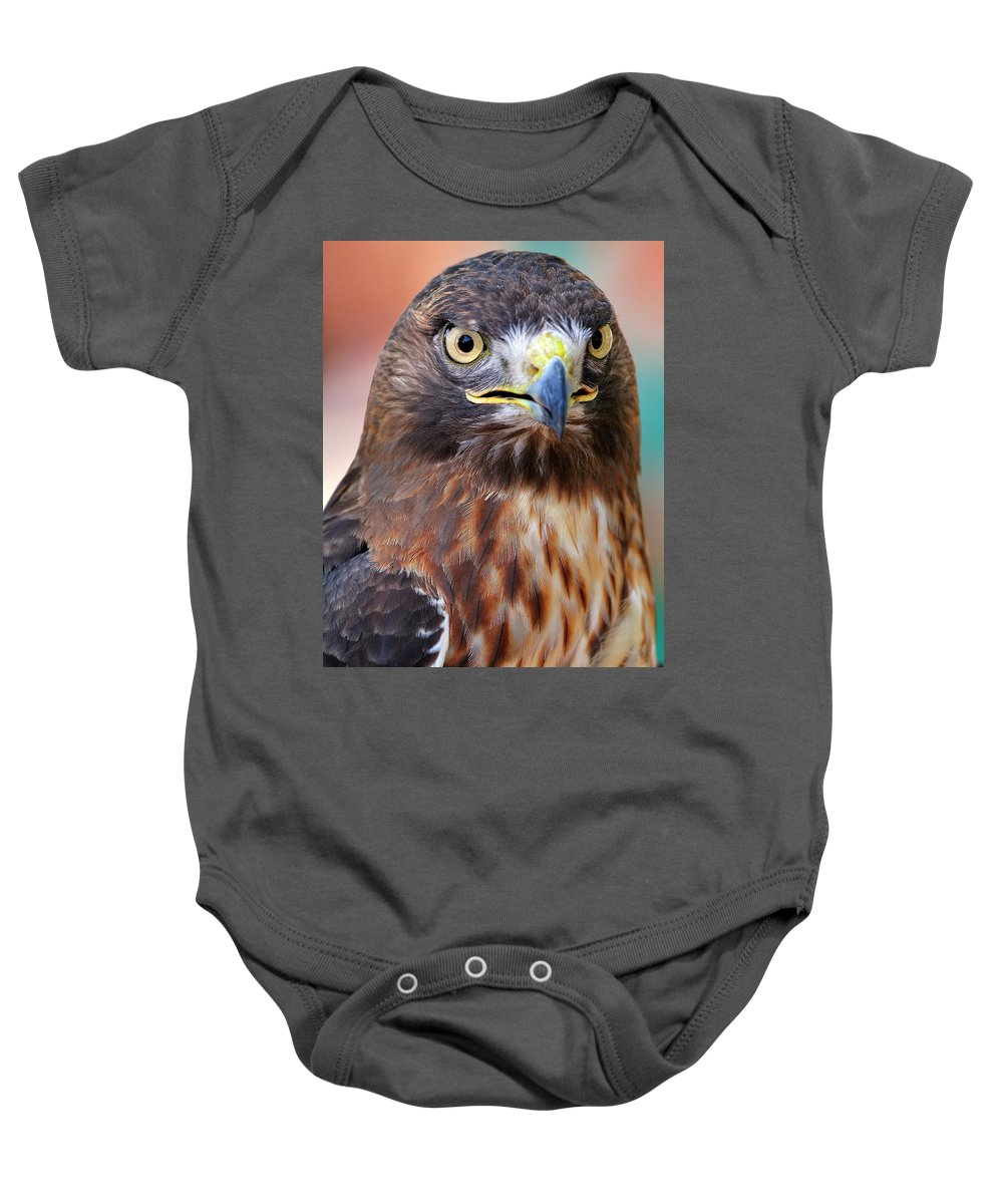 Red-tailed Baby Onesie featuring the photograph Red-tailed Hawk by Bill Dodsworth