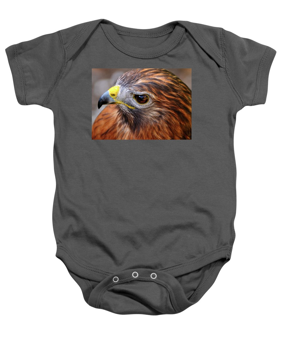 Red-tailed Baby Onesie featuring the photograph Red-tailed Hawk Close Up by Bill Dodsworth