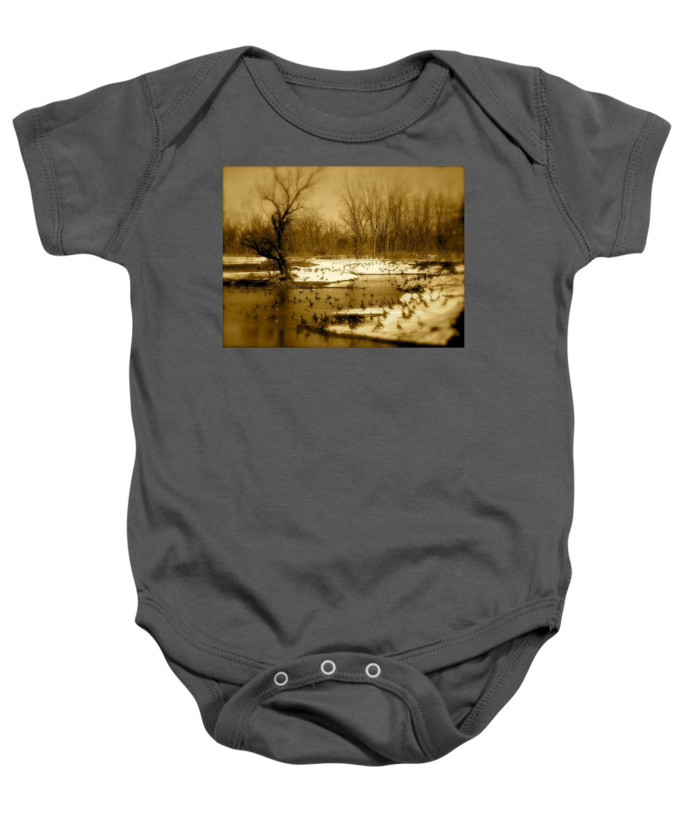 Landscape Baby Onesie featuring the photograph Resting Up by Arthur Barnes