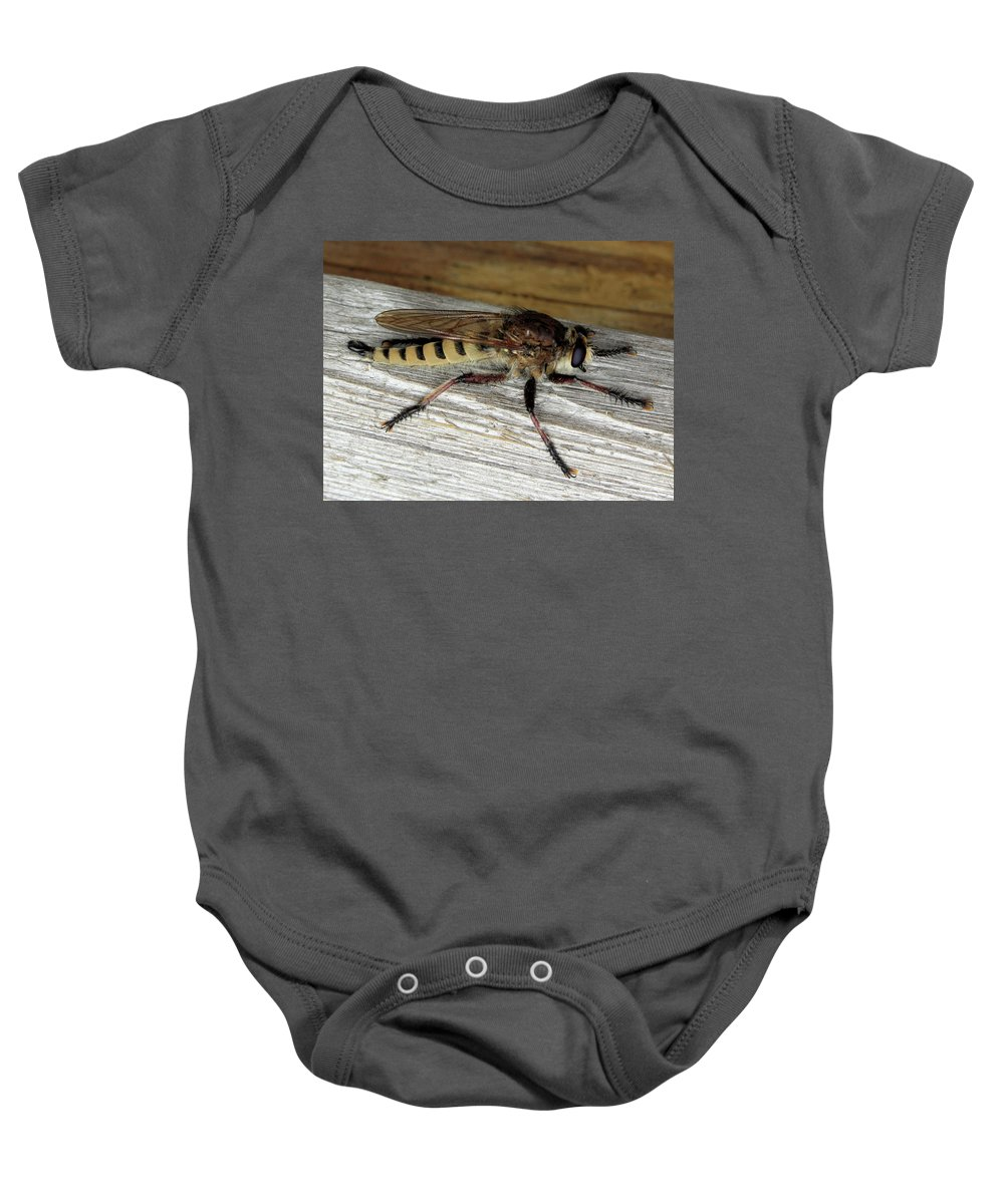 These Insects Look Scary Baby Onesie featuring the photograph Robber Fly by Kristin Elmquist