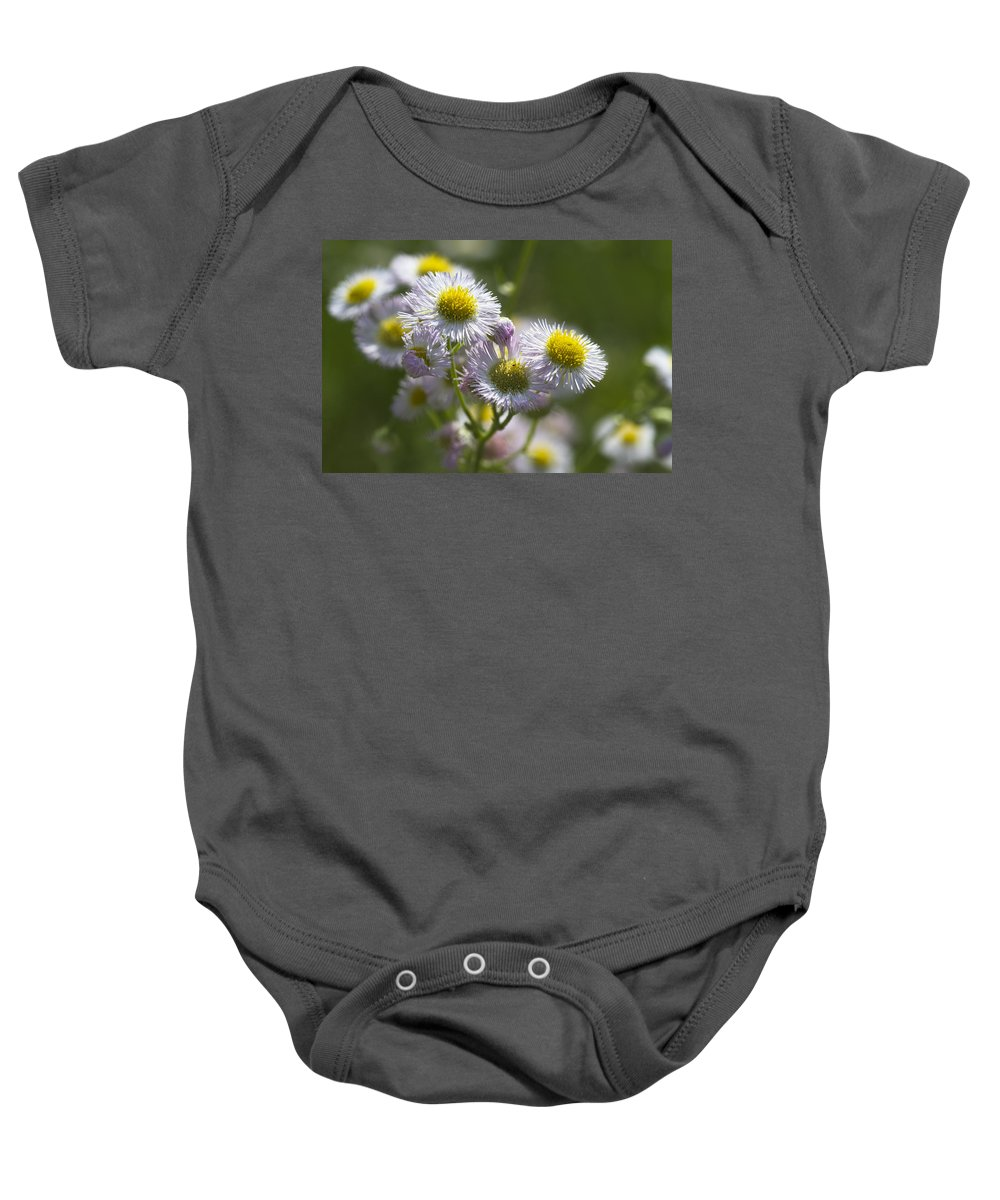 Robins Plantain Baby Onesie featuring the photograph Robin's Plantain - Alabama Wildflowers by Kathy Clark