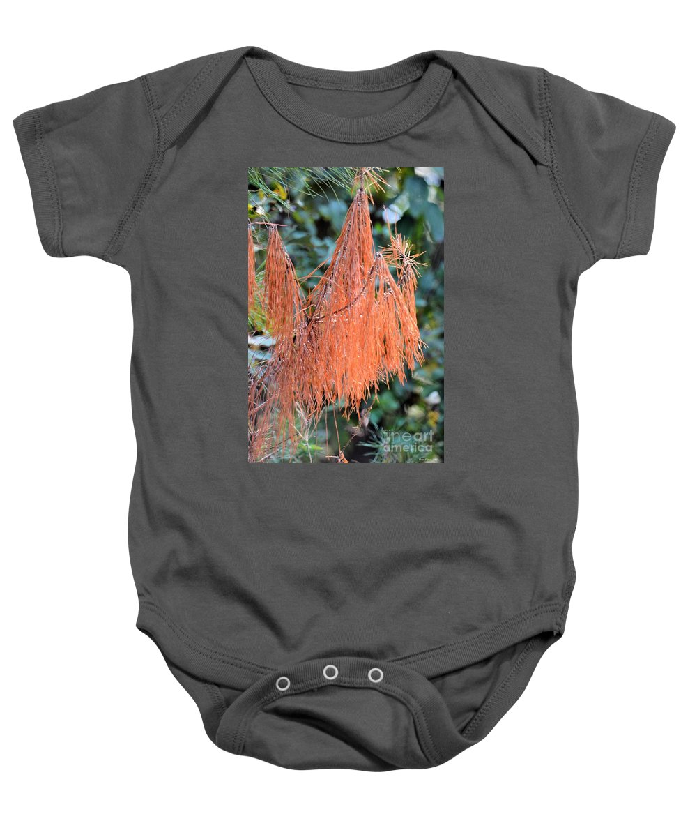 Rusty Needles Baby Onesie featuring the photograph Rusty Needles by Maria Urso
