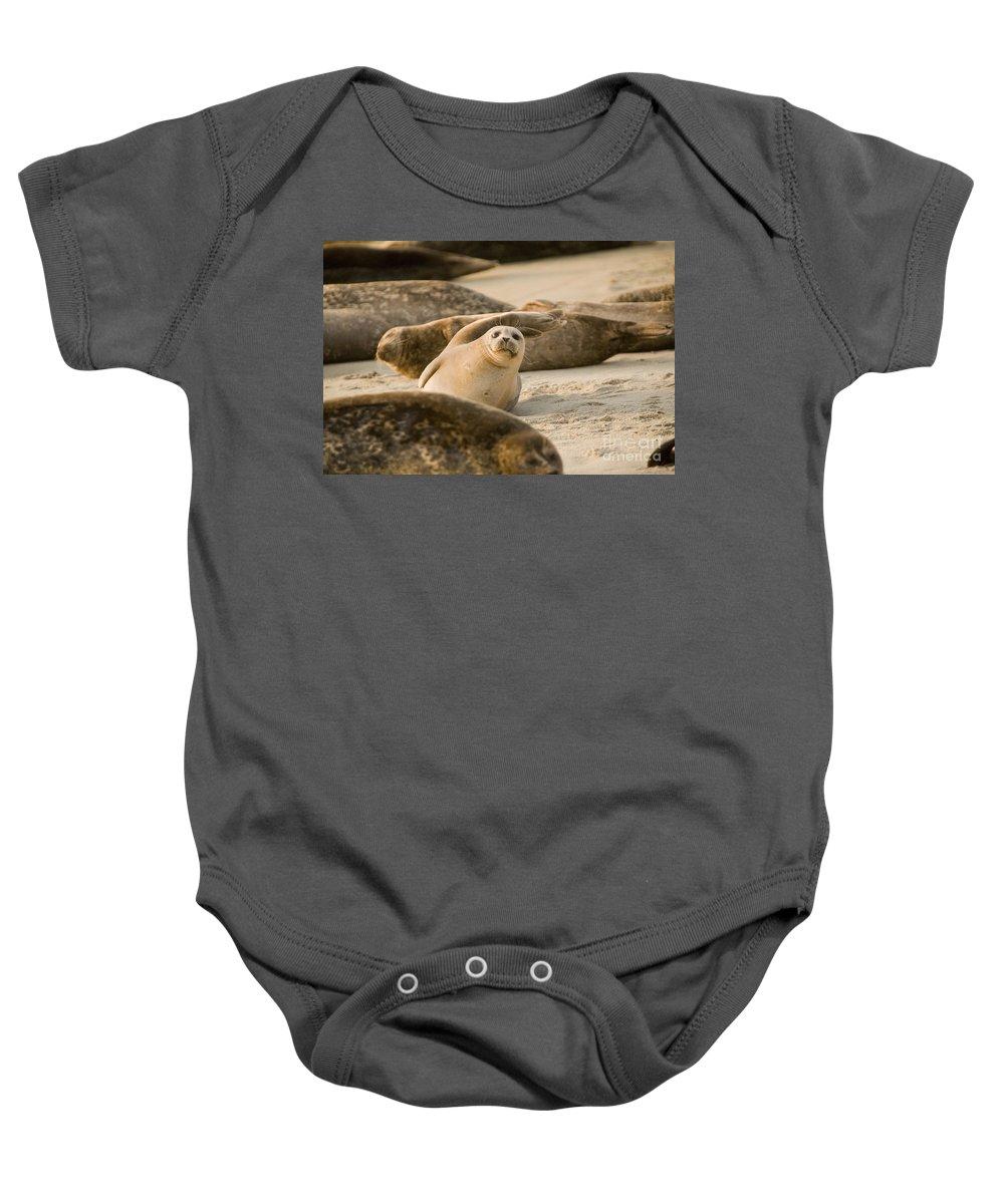 La Jolla Baby Onesie featuring the photograph Seal 4 by Daniel Knighton