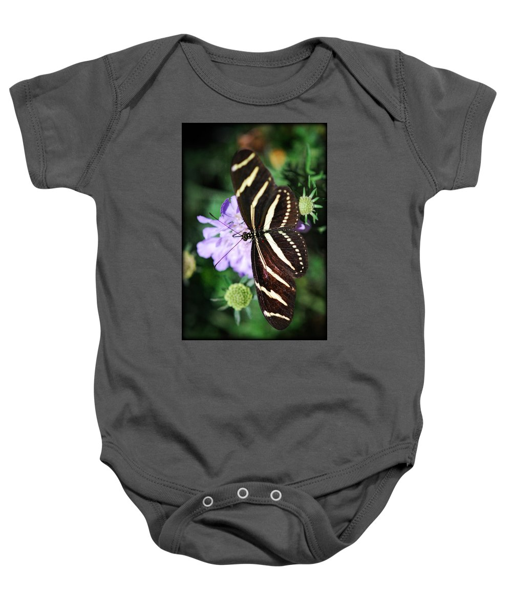 Zebra Lonwing Butterfly Baby Onesie featuring the photograph Shape Of My Heart by Saija Lehtonen