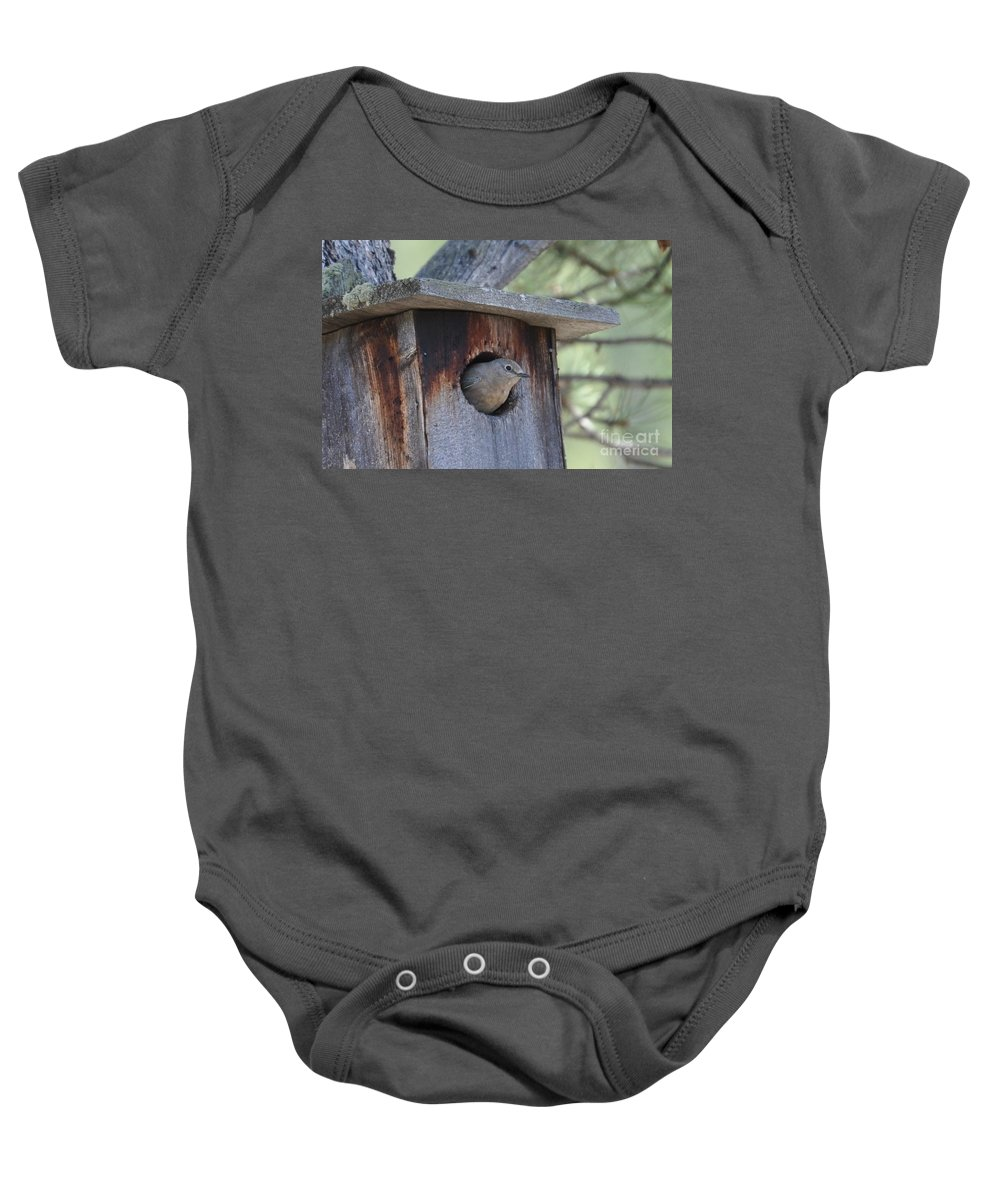 Bird Baby Onesie featuring the photograph She's Home by Dorrene BrownButterfield