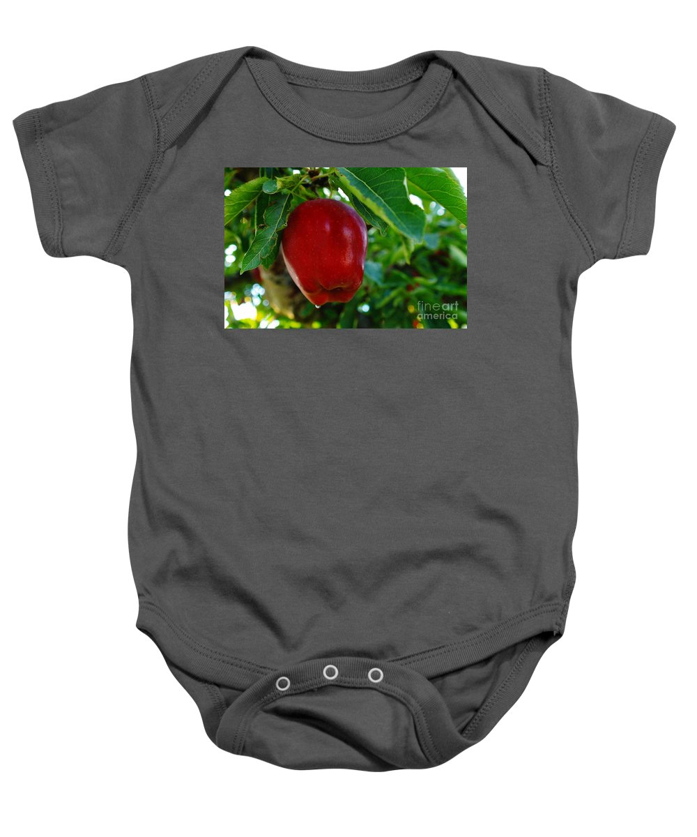 Fruit Baby Onesie featuring the photograph Shiny Red And Ripe by Jeff Swan