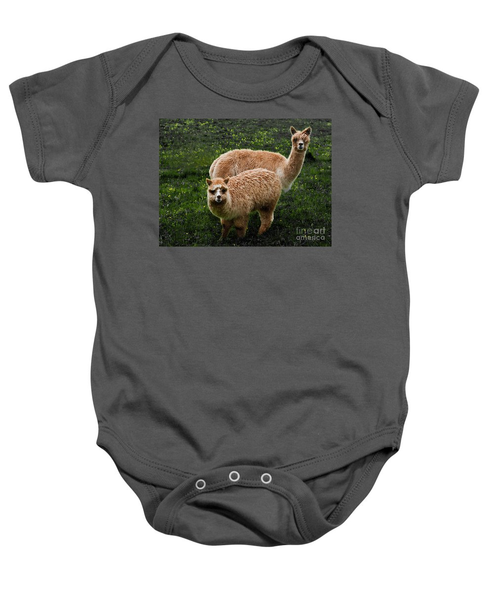 Animals Baby Onesie featuring the photograph Short And Tall by Barbara McMahon