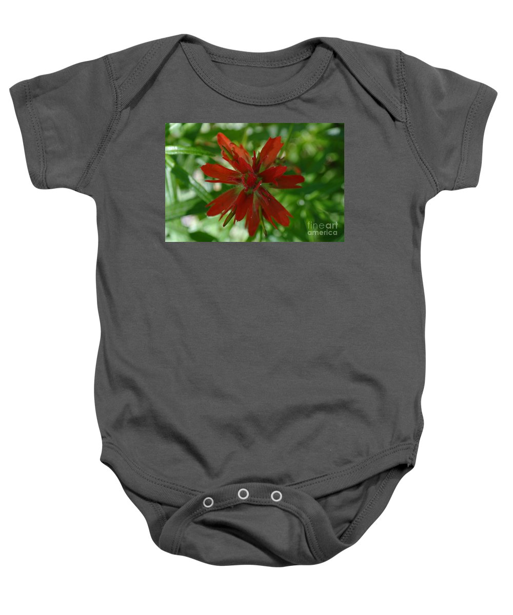 Flower Baby Onesie featuring the photograph Small Red Wildflower by Jeff Swan