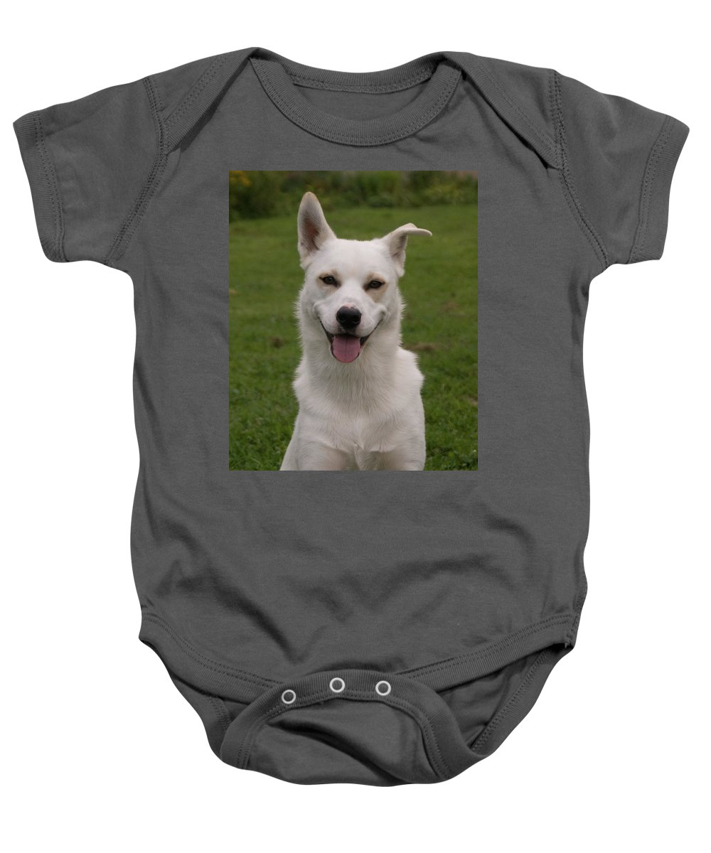 Dog Baby Onesie featuring the photograph Smiley 0151 by Guy Whiteley