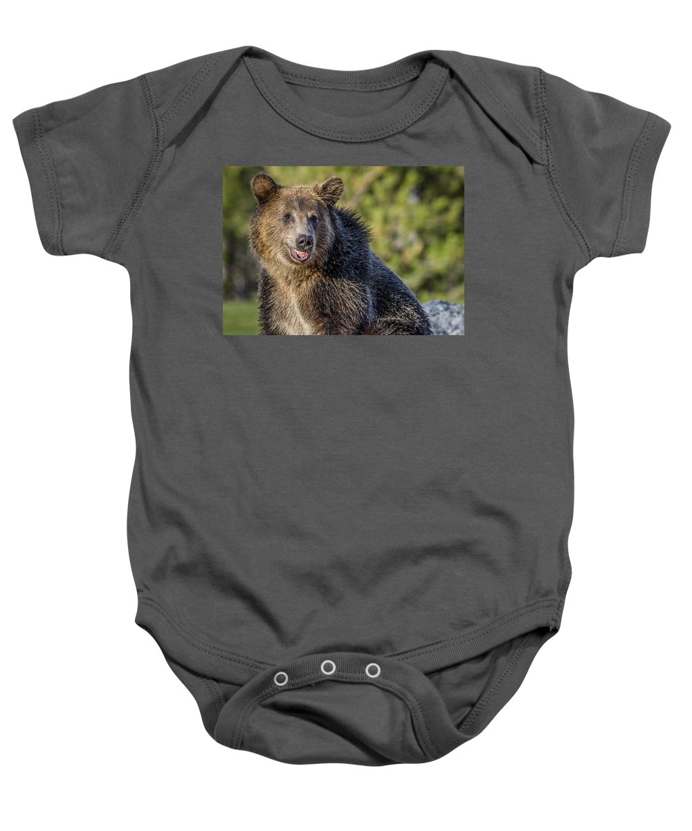 Grizzly Bear Baby Onesie featuring the photograph Smiling Grizzly by Greg Nyquist