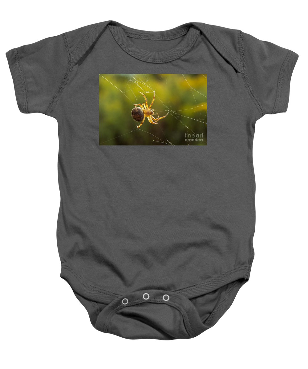 Spider Baby Onesie featuring the photograph Spider by Darleen Stry