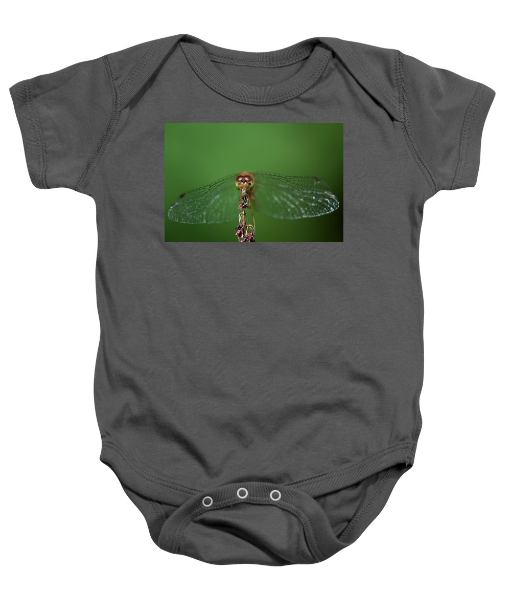 Dragonfly Baby Onesie featuring the photograph Spread Your Wings And Fly Away by Evelina Kremsdorf