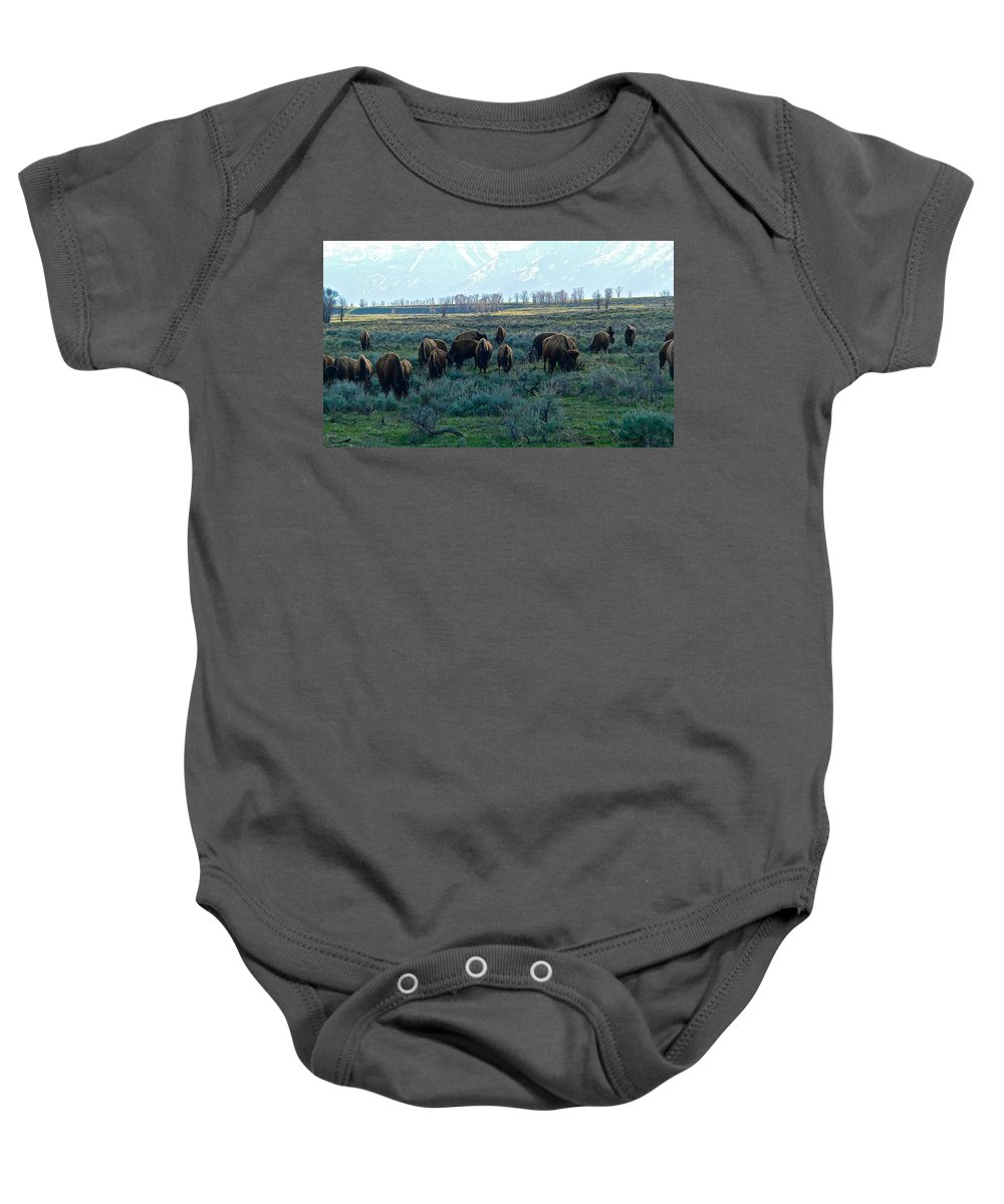Grand Teton National Park Baby Onesie featuring the photograph Spring Salad Grazing by Eric Tressler