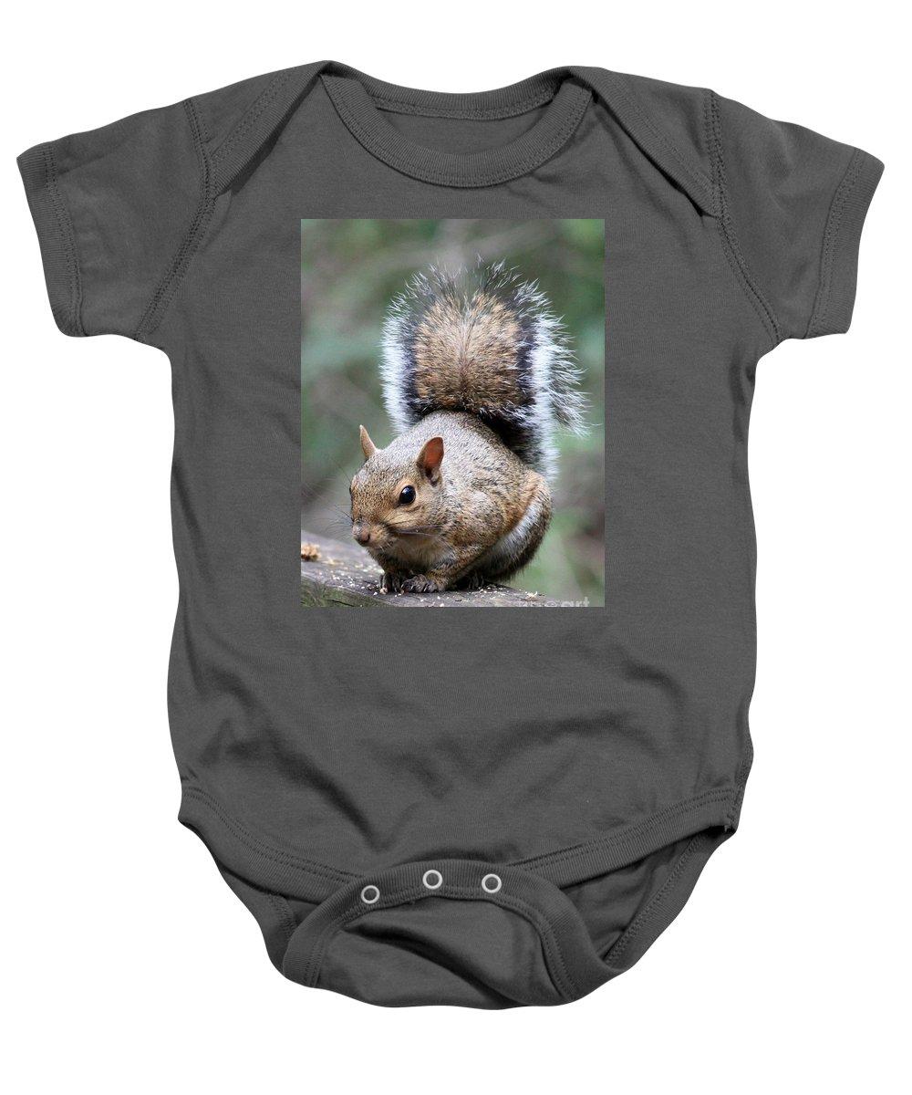 Squirrel Baby Onesie featuring the photograph Squirrel by Carol Groenen