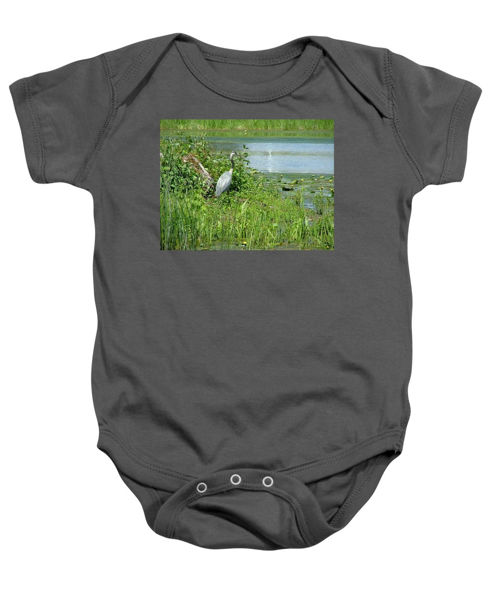 Crane Baby Onesie featuring the photograph Still Looking For by Dennis Pintoski